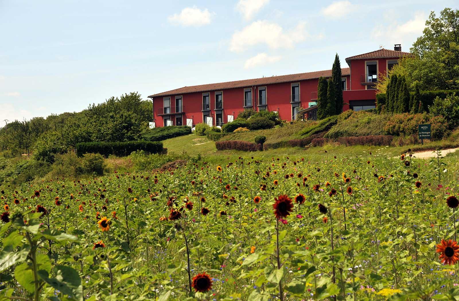 Façade de l'hôtel La Montagne de Brancion et jachère fleurie entre Tournus et Cluny
