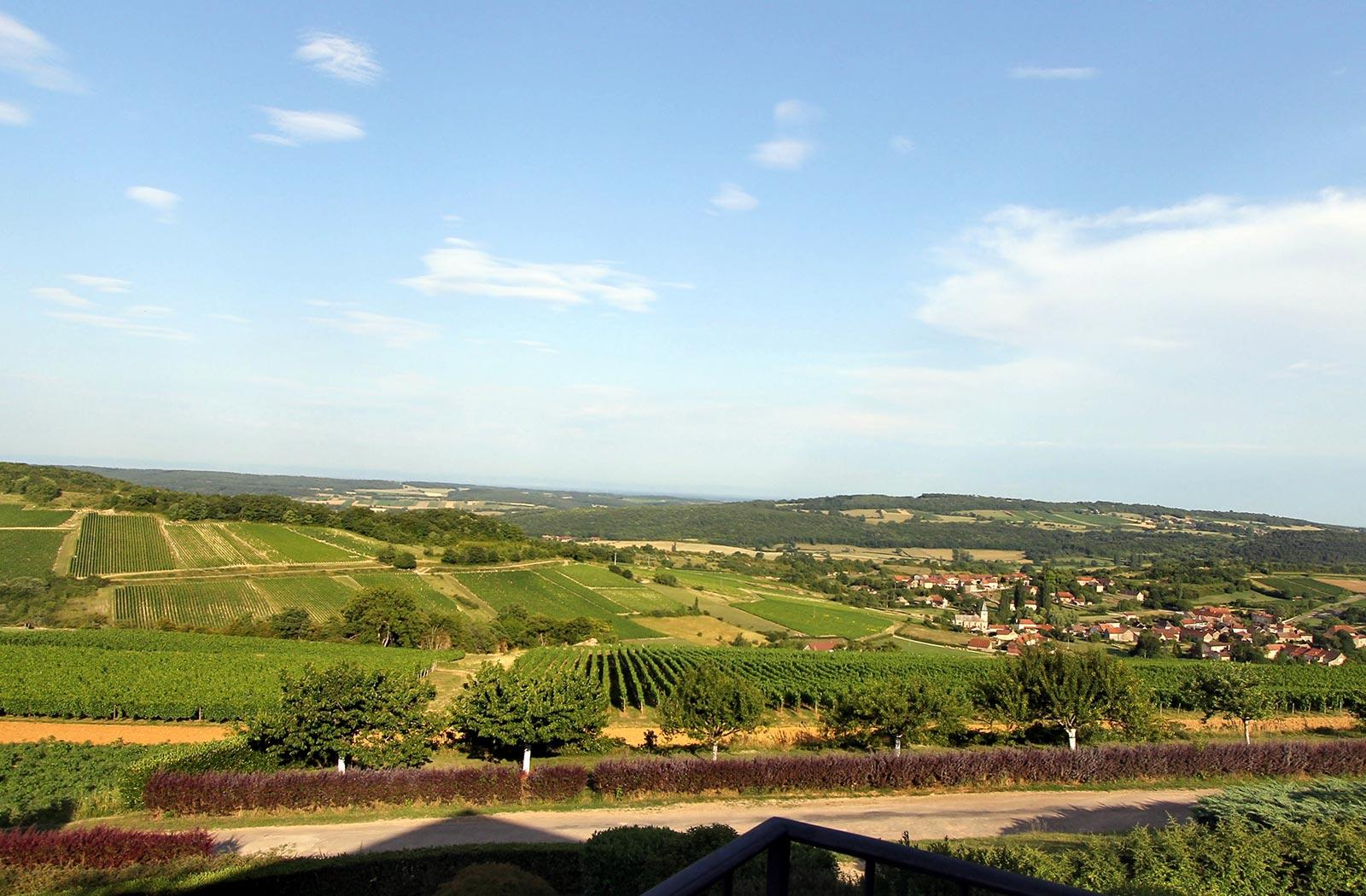 Vue panoramique - Chambre harmonie hôtel La montagne de Brancion entre Tournus et Cluny